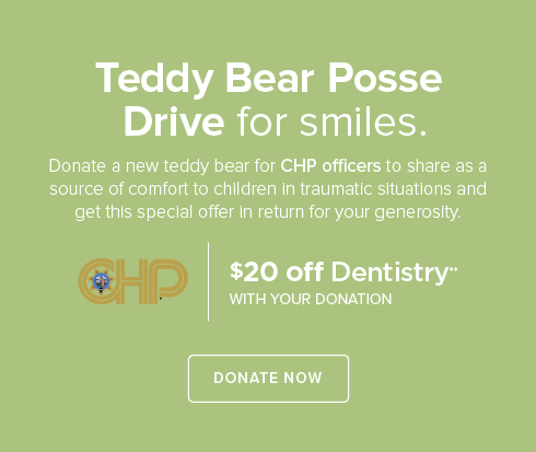 Teddy Bear Posse - Citrus Heights Modern Dentistry